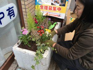 花壇植え込み