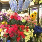 母の日 切花