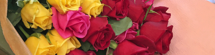 とよな花ROSE