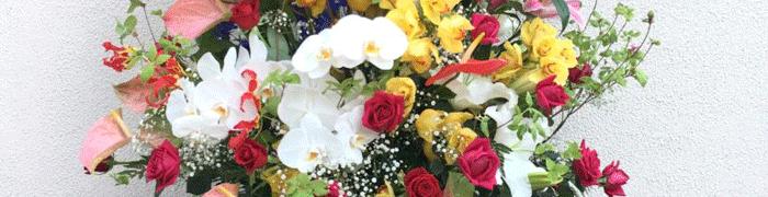 法人様 周年祝い 花