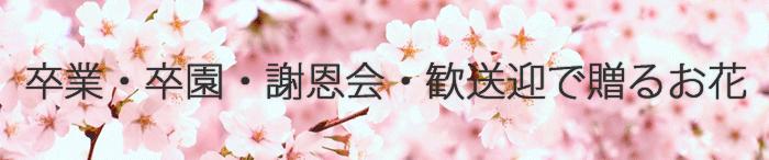 卒業・卒園 花